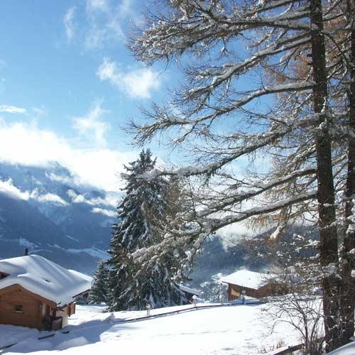 Wintertag Chalet zum Hirsch, Bellwald